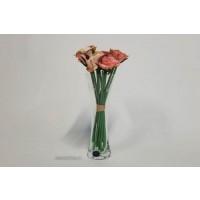 Vaza Bohemia cristalit - Love Coral - Nr catalog 3237 (Vaze)